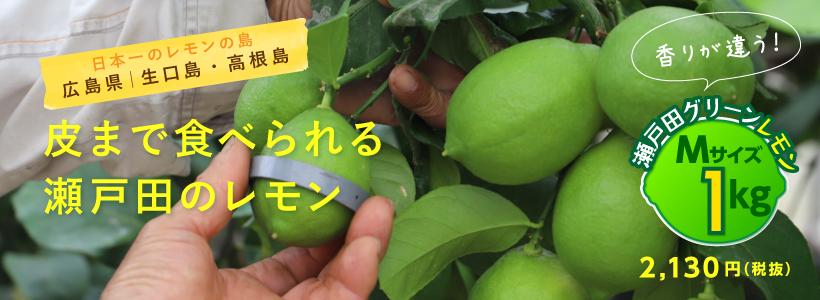 瀬戸田グリーンレモン