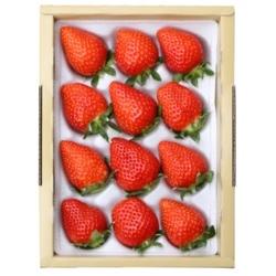 朝摘み・即日発送!甘くて酸味の少ない香るいちご「かおり野」 大12粒