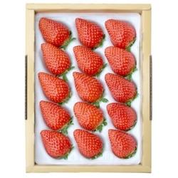 朝摘み・即日発送!甘くて酸味の少ない香るいちご「かおり野」 中15粒